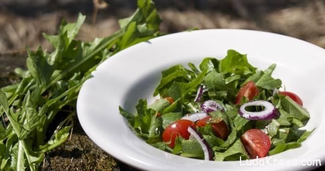 maslackova salata