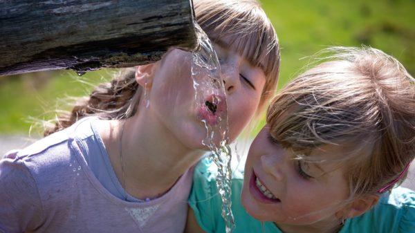 Destilirana voda je zdrava