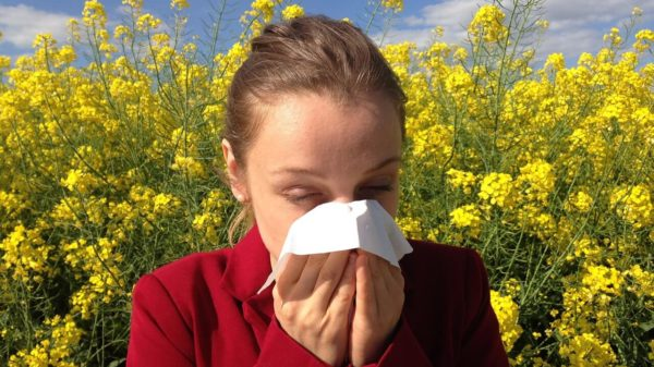 Proljetne alergije prirodni lijekovi